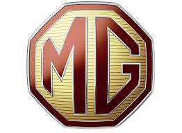 MG Auction